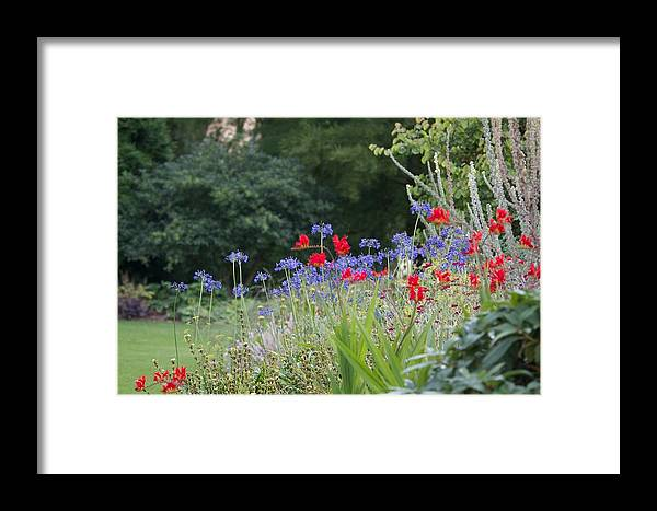 Red Framed Print featuring the photograph Beth Chatto Gardens by Sean Foreman