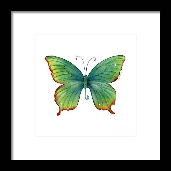 74 Green Flame Tip Butterfly Framed Print by Amy Kirkpatrick
