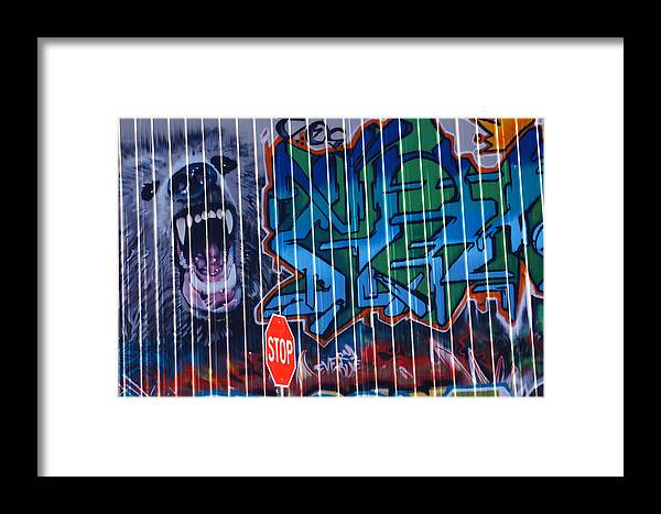 Graffiti Framed Print featuring the photograph Shadows Of Substance by Steve Keller