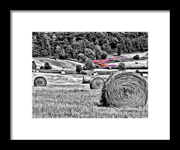 Hay Framed Print featuring the photograph 9285 by Charles Cunningham
