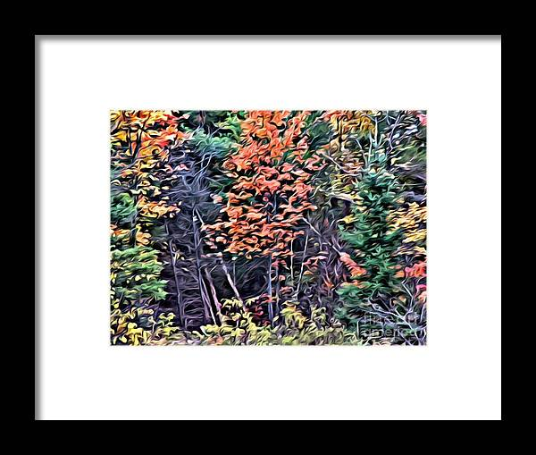 Fall Foliage Framed Print featuring the photograph 9374 by Charles Cunningham