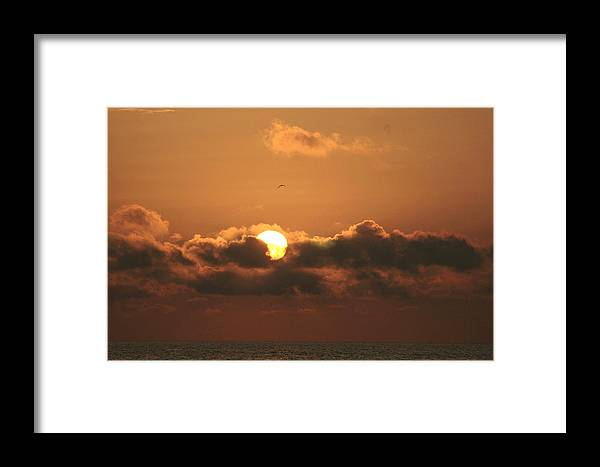 Sun Framed Print featuring the photograph A Bed For The Sun by David Rosenthal