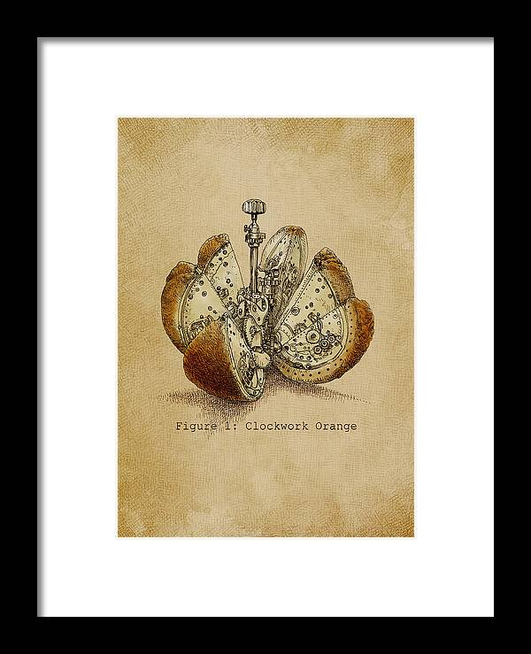 Orange Framed Print featuring the drawing Steampunk Orange - Option by Eric Fan