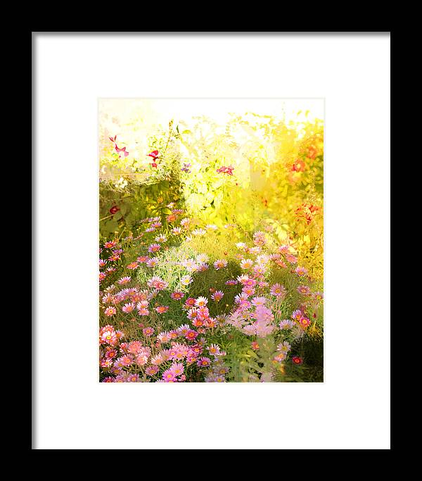 Daisy Flowers Framed Print featuring the photograph A Daisy A Day by Linde Townsend