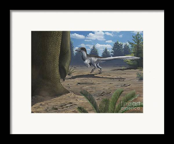 Paw Prints Framed Print featuring the digital art A Deinonychosaur Leaves Tracks by Emily Willoughby