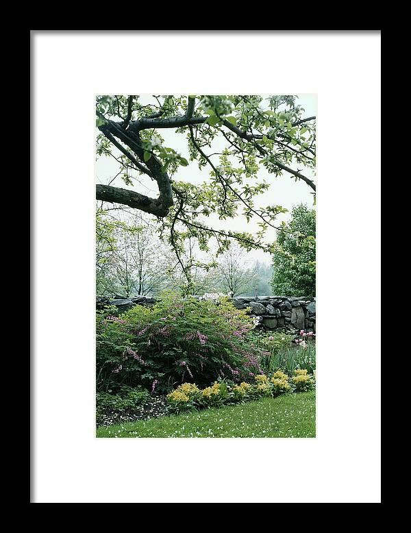 Nobody Framed Print featuring the photograph A Flower Bed In Mrs. Frank Audibert's Garden by Samuel H. Gottscho