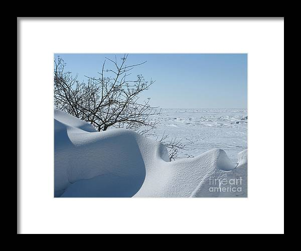 Winter Framed Print featuring the photograph A Gentle Beauty by Ann Horn