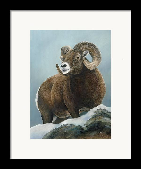 Big Horn Sheep Framed Print featuring the pastel A Glimpse From The Edge by Karen Cade
