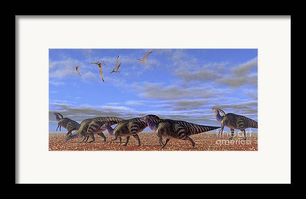 Parasaurolophus Framed Print featuring the digital art A Herd Of Parasaurolophus Dinosaurs by Corey Ford