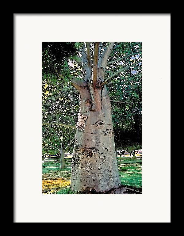 Tranquil Framed Print featuring the photograph A Lifetime Of Scars by Terry Reynoldson