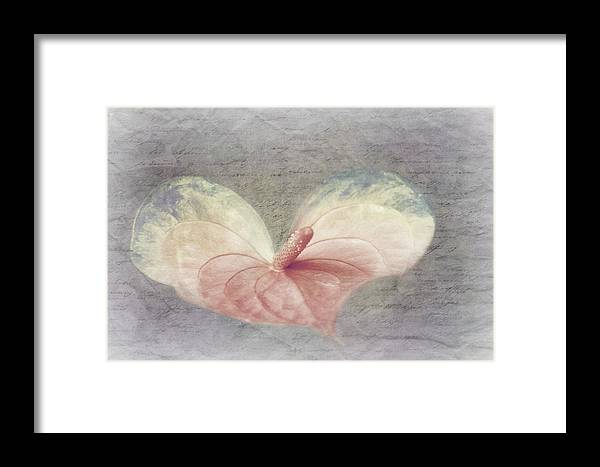 Decoration Framed Print featuring the photograph A Love Letter by Heike Hultsch