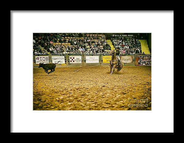 Night Framed Print featuring the photograph A Night At The Rodeo V15 by Douglas Barnard