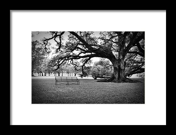 Southern Framed Print featuring the photograph A Place To Relax by Todd Hartzo