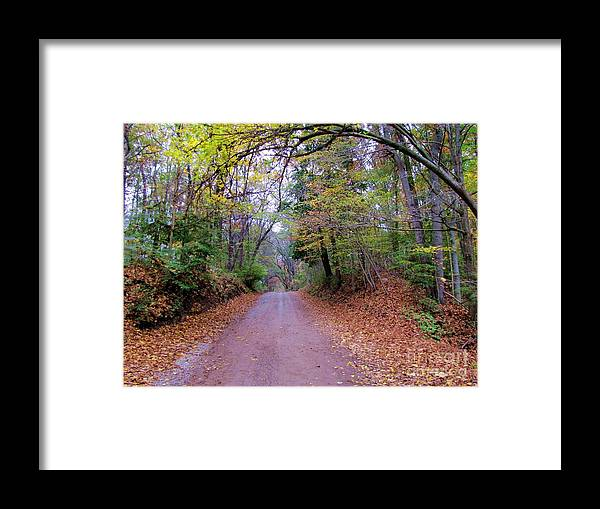 Autumn Framed Print featuring the photograph A Road In Autumn. by Dipali S