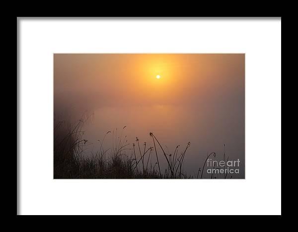 Dan Jurak Framed Print featuring the photograph A Simple Prairie Pond by Dan Jurak