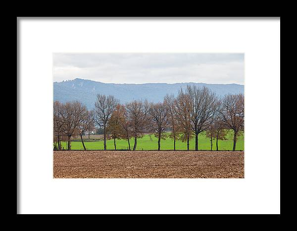 Field Framed Print featuring the photograph A Tale Of Two Fields by W Chris Fooshee