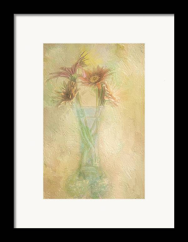 Daisies Framed Print featuring the photograph A Vase Of Gerbera Daisies In The Sun by Diane Schuster
