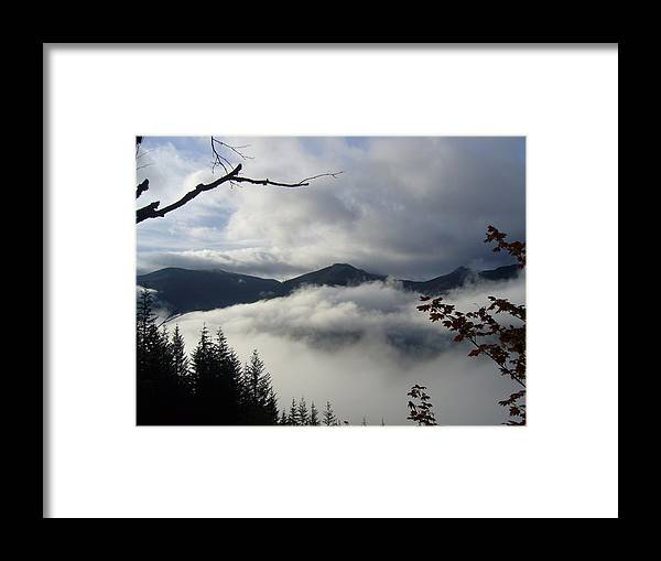Landscape Framed Print featuring the photograph A Walk In The Clouds by Mark Camp