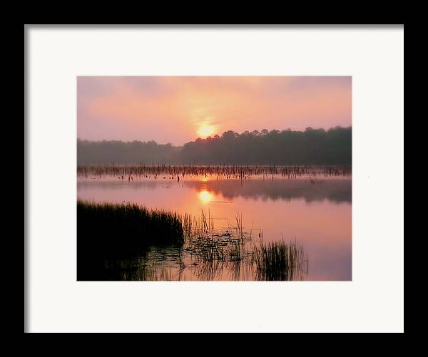 Alabama Framed Print featuring the photograph A Wetlands Sunrise by JC Findley