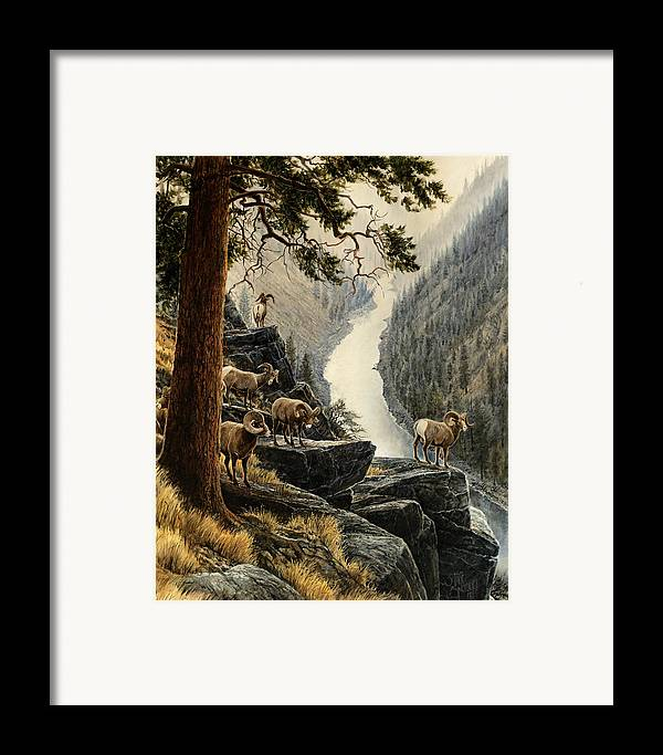 Salmon River Framed Print featuring the painting Above The River by Steve Spencer
