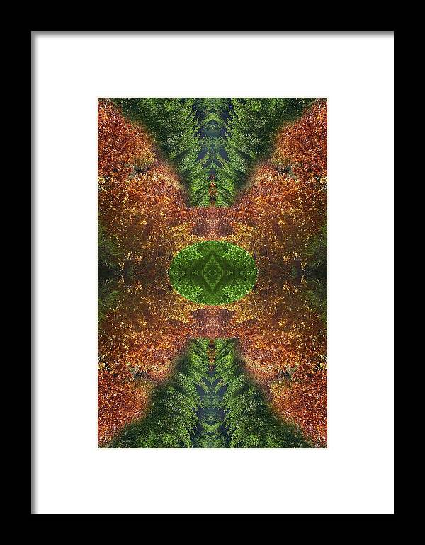 Original Framed Print featuring the photograph Abstract 164 by J D Owen