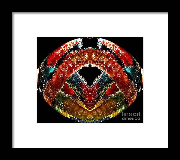 Gummies Framed Print featuring the photograph Abstract Ball Of Gummies. by Dipali S