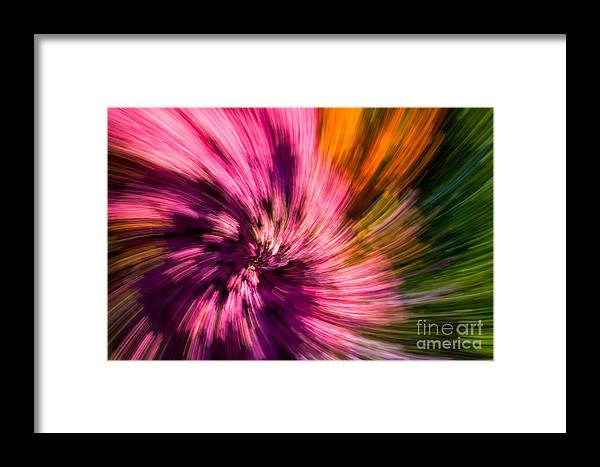 Green Framed Print featuring the photograph Abstract Flower Spiral by Sarah Cheriton-Jones