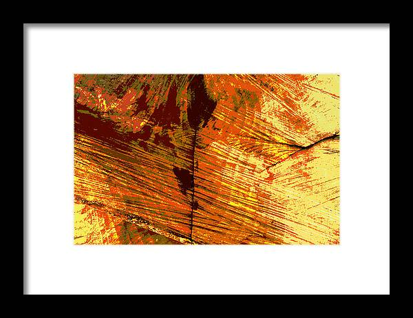 Abstract Framed Print featuring the photograph Abstract Wood Grain by John Lautermilch