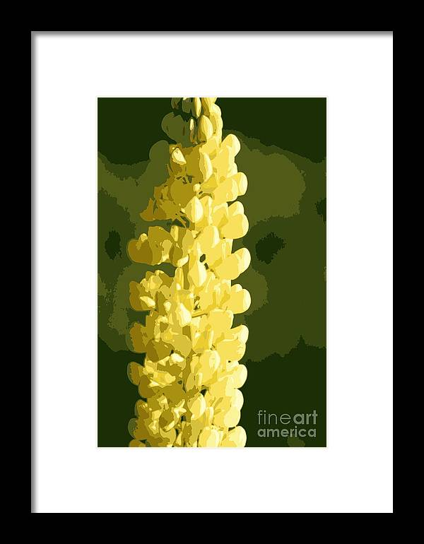 Yellow Framed Print featuring the photograph Abstract Yellow Lupine by Kenny Glotfelty