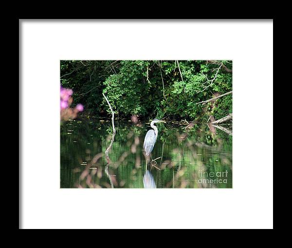 Framed Print featuring the photograph Aep068a by Scott B Bennett