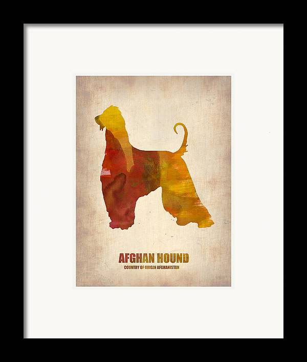 Afghan Hound Framed Print featuring the painting Afghan Hound Poster by Naxart Studio