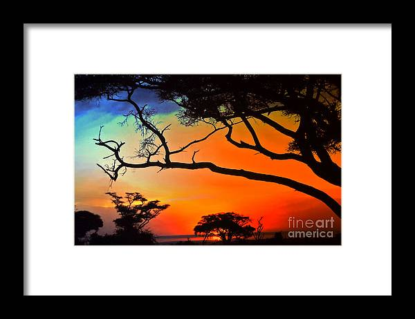 Africa Framed Print featuring the photograph African Skies by Lydia Holly