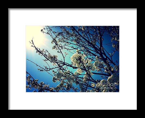Blue And White Framed Print featuring the photograph After The Storm In Blue by Carol Groenen