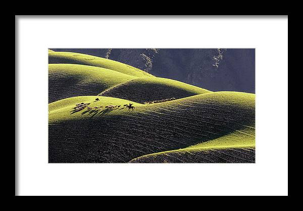 Grassland Framed Print featuring the photograph Afternoon by Ke Liu