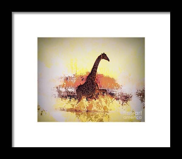 Arne J Hansen Framed Print featuring the photograph Afternoon Splash by Arne Hansen