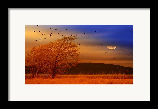 Landscape Framed Print featuring the photograph Against The Wind by Holly Kempe