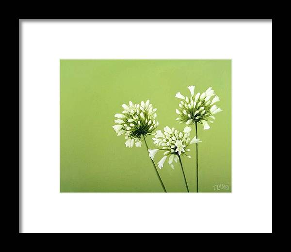 Flower Framed Print featuring the painting Agapanthus by Trisha Lambi