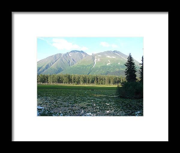 Alaska Framed Print featuring the photograph Alaska Lake 2 by Lew Davis