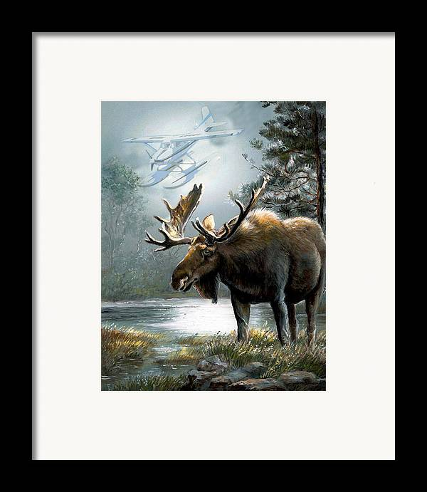 Alaska Moos With Floatplane Animal Art Framed Print featuring the painting Alaska Moose With Floatplane by Regina Femrite