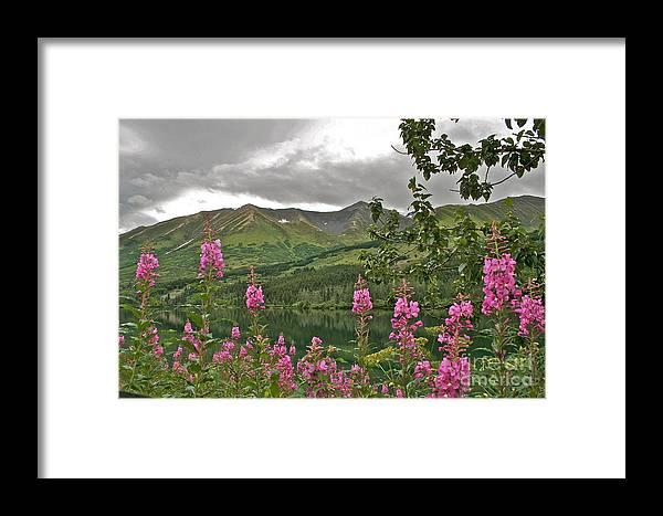 Alaska Framed Print featuring the photograph Alaskan Summer by Rick Monyahan