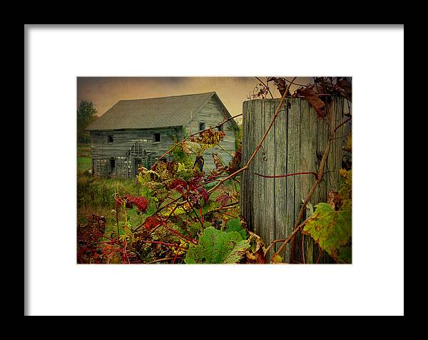 Terry Tanner Framed Print featuring the photograph Albert Road by Terry Eve Tanner