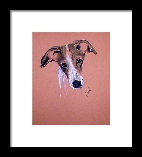 Whippet Framed Print featuring the drawing All Ears by Cori Solomon