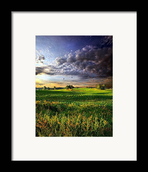 Horizons Framed Print featuring the photograph All I Need by Phil Koch