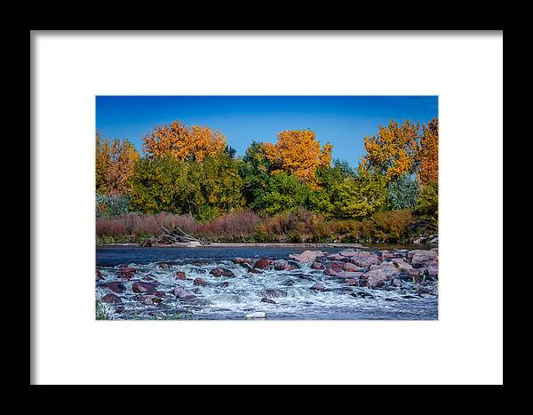 Creek Framed Print featuring the photograph Along The Creek by Ernie Echols