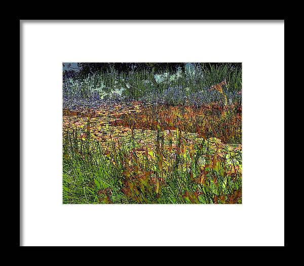 Flowers Framed Print featuring the photograph Along The Edge by Jodie Marie Anne Richardson Traugott     aka jm-ART