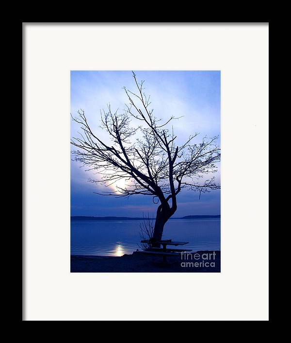 Emotion Framed Print featuring the photograph Am I Blue? by Chris Anderson