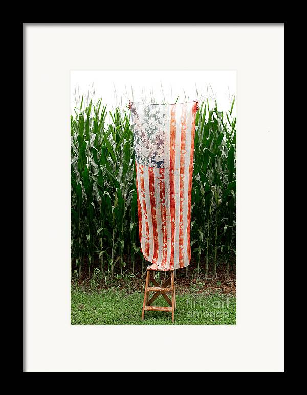 American Flag Framed Print featuring the photograph American Flag And A Field Of Corn by Kim Fearheiley