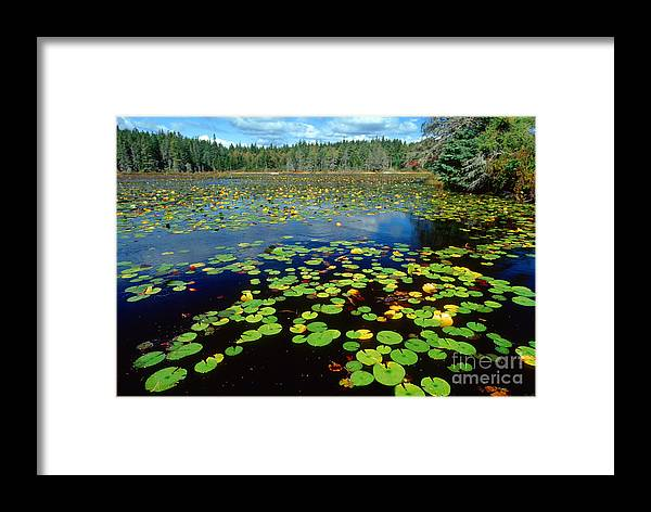 Ames Pond Framed Print featuring the photograph Ames Pond by Jim Block