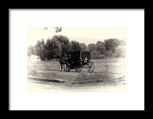 Horse Framed Print featuring the photograph Amish Buggy Sept 2013 by David Arment