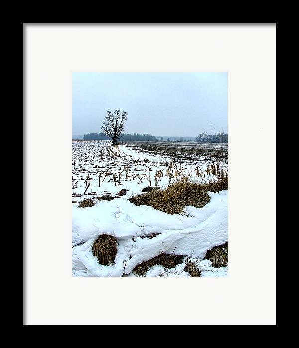 Amish Framed Print featuring the photograph Amish Field In Winter by Julie Dant